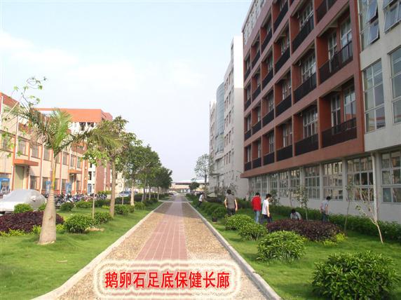 省岭南工商第一技师学院2012招生简章高清图片